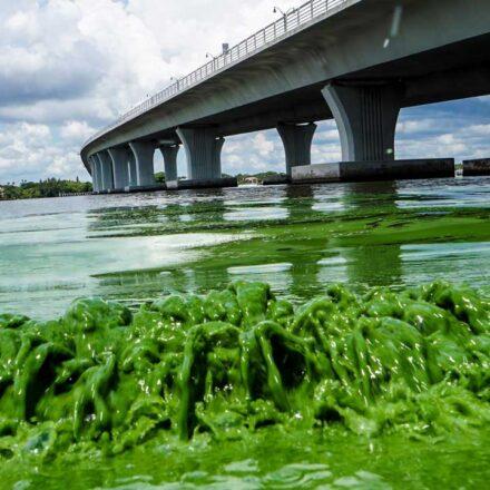 Scariest Bridges in the US