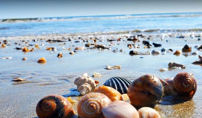 Longest Beaches in the US