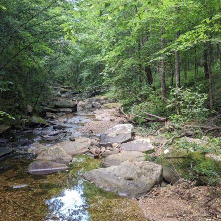best hiking trail in alabama