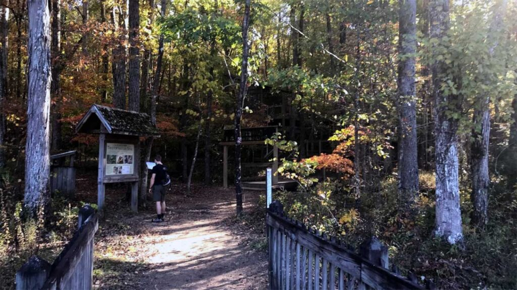 Treetop Nature Trail