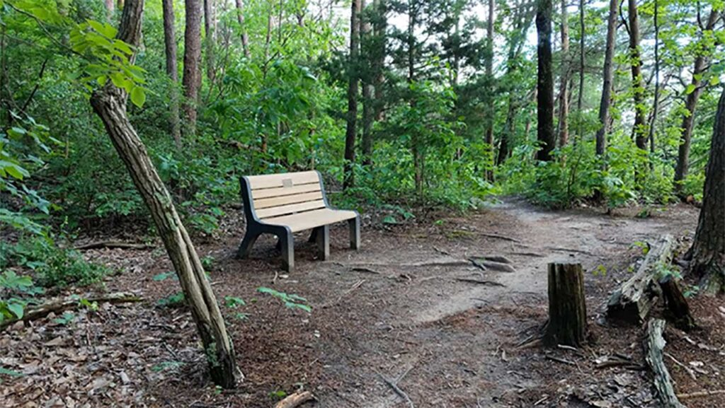 Alum Hollow Trail