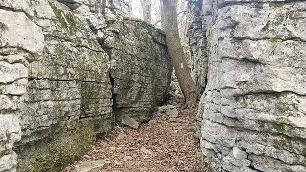 Stone Cuts Trail