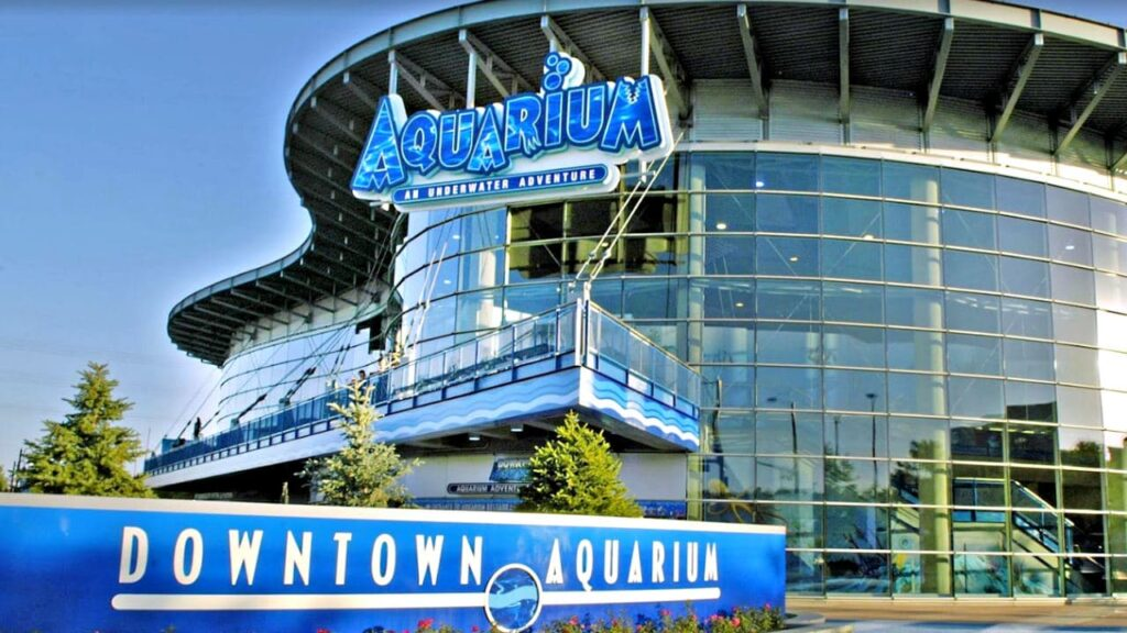 Downtown Aquarium is one of the best amusement parks in Colorado